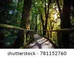 Ang Ka Nature Trail Is Tropica...