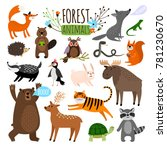 forest animals. woodland cute... | Shutterstock .eps vector #781230670