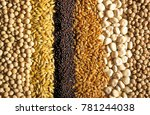 cereal grains  with a great... | Shutterstock . vector #781244038