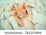 Stock photo little red kitten cat lies on the fluffy carpet at home little kitten sleeps close up of a 781251844