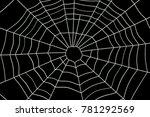 spider web  3d rendering... | Shutterstock . vector #781292569