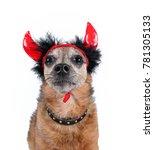 cute chihuahua in a costume... | Shutterstock . vector #781305133