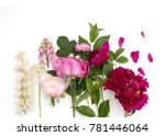 beautiful colorful peonie... | Shutterstock . vector #781446064