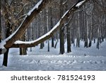 snowy day in the city park  ... | Shutterstock . vector #781524193