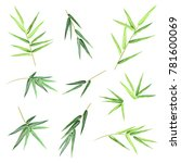 Bamboo Leaves. Set Of Hand...