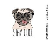 Pug Dog In A Glasses. Vector...