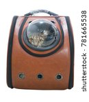 Tabby Cat In Traveler Backpack...