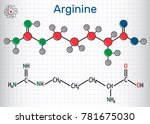 arginine  arg  r  amino acid... | Shutterstock .eps vector #781675030