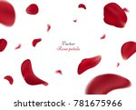 Falling red rose petals isolated on white background. Vector illustration with beauty roses petal, applicable for design of greeting cards on March 8 and St. Valentine's Day. Eps 10