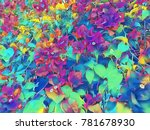 rainbow colored tropical flower.... | Shutterstock . vector #781678930