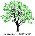 vector image of a tree in spring | Shutterstock .eps vector #781714519