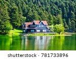 wooden lake house inside forest ...   Shutterstock . vector #781733896