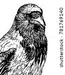 hooded crow line art woodcut... | Shutterstock . vector #781769140