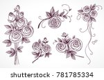 roses set. collection of roses... | Shutterstock .eps vector #781785334