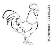 sketchy outline of rooster | Shutterstock .eps vector #781851256