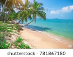 tropical beach with coconut palm | Shutterstock . vector #781867180