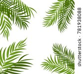 beautifil palm tree leaf ... | Shutterstock .eps vector #781938088
