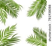 beautifil palm tree leaf ... | Shutterstock .eps vector #781938088