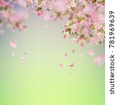 vector background with spring... | Shutterstock .eps vector #781969639