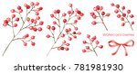 red berries. floral set.... | Shutterstock . vector #781981930