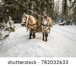 pair of horses drag a slade in... | Shutterstock . vector #782032633