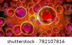 Embryonic Stem Cells   Cellula...