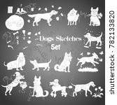 funny dogs sketches. hand... | Shutterstock .eps vector #782133820