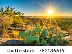 sonora desert cactus on hill at ... | Shutterstock . vector #782136619