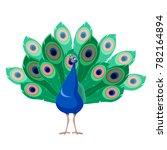 cartoon smiling peacock | Shutterstock . vector #782164894