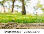 selective focus of wood bark on ... | Shutterstock . vector #782238370