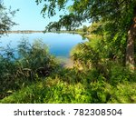 picturesque summer lake calm... | Shutterstock . vector #782308504