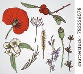 floral elements seta big... | Shutterstock .eps vector #782326078