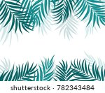 beautifil palm tree leaf ... | Shutterstock .eps vector #782343484