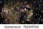 woman and world of numerology | Shutterstock . vector #782349760
