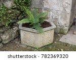 Stock photo ceramic pot with anglo saxon design ceramic pot with an anglo saxon knot design in an english 782369320