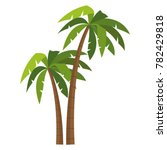 tree palms isolated