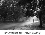 A Lone Cyclist In Morning Mist.