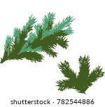 green spruce branch | Shutterstock .eps vector #782544886