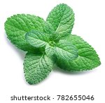 spearmint or mint on white... | Shutterstock . vector #782655046