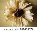 artificial decorating flower... | Shutterstock . vector #782805874