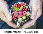 berries. beautiful  ripe...   Shutterstock . vector #782821186