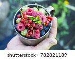 berries. beautiful  ripe...   Shutterstock . vector #782821189