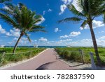 Usa  Florida  Path To The Whit...