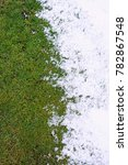 Small photo of green grass and snow. warming, abnormal weather. background