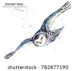 Snowy Owl Watercolor...