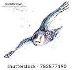 Snowy Owl Watercolor...