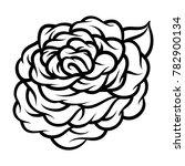 flower rose  black and white.... | Shutterstock .eps vector #782900134