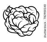 flower rose  black and white.... | Shutterstock .eps vector #782900140
