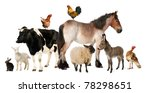 Variety Of Farm Animals In...