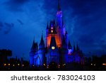 The Beautiful Disney Castle...